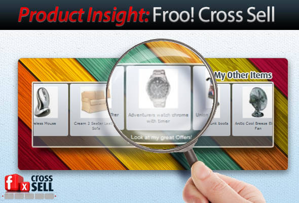 Product Insight: Froo! Cross Sell