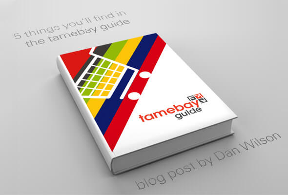 5 things you'll find in Tamebay Ecommerce Guide