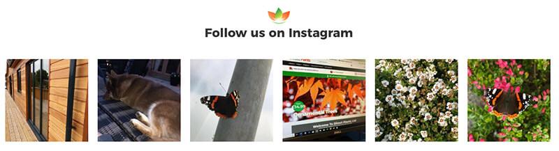 Best Ecommerce website instagram